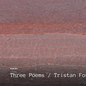 Three Poems by Tristan Foster in RIC Journal